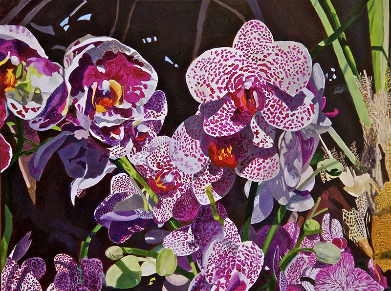 Orchids Hot House No. 2