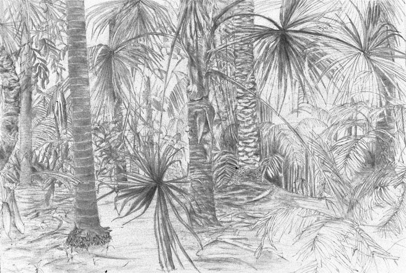 Interior, Botanic Gardens