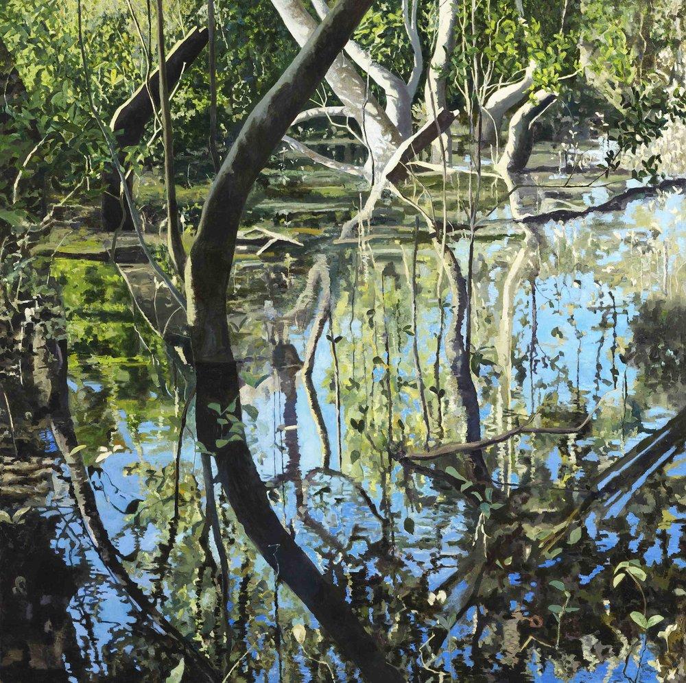 Wetlands, Lane Cove NSW