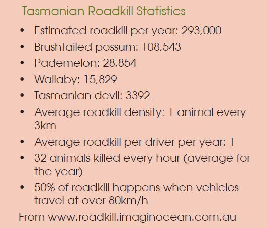 In response to the ongoing, tragic and seemingly intractable issue of roadkill, the TCT conducted a survey of all major road managers within the state to try to identify where there might be better coordination of resources and effort, hopefully leading to fewer deaths and injuries of animals on our roads. Here is the summary of results and recommendations.  -