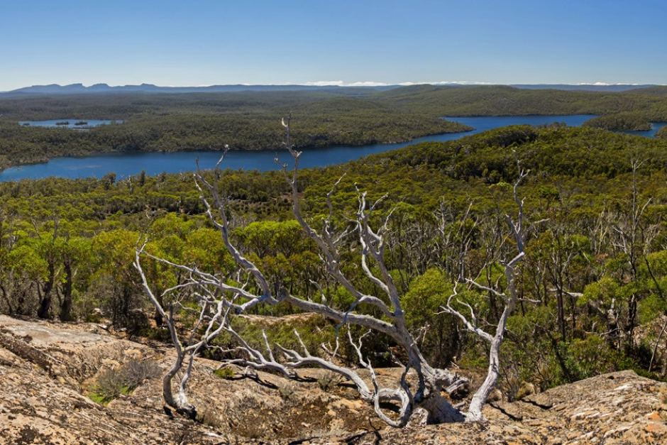 Lake Malbena courtesy of Tasmanian National Parks Association