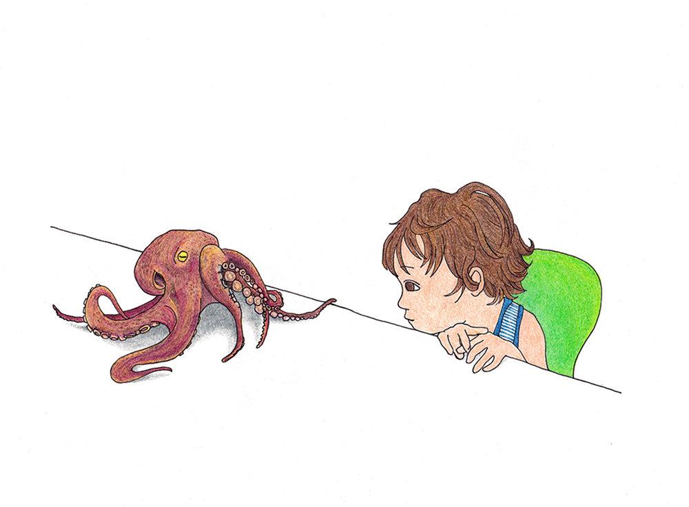 octopus_s.jpg