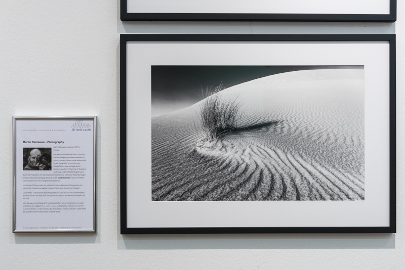 Martin_Ramsauer_Ausstellung-4840.jpg