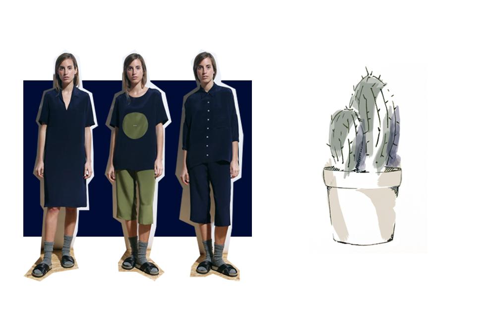 cactus-marina