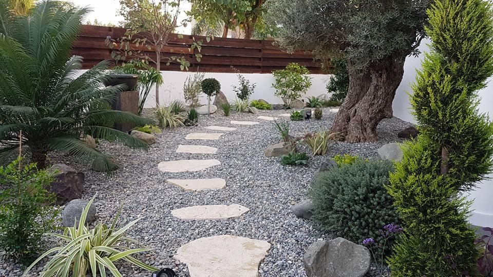mjinimal native garden.jpg