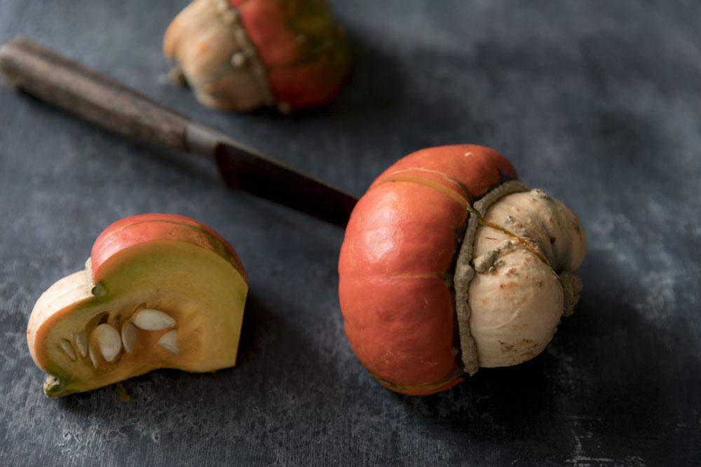 Turks Head Pumpkin-7.jpg