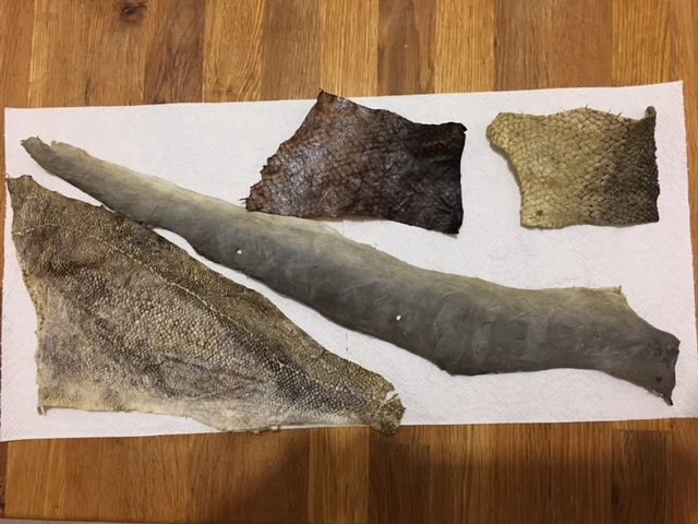 Pictured: After the workshop I received an email from John with his finished fish skins. The one top and centre he naturally dyed using coffee. Nifty Huh! (Photo credit: John)
