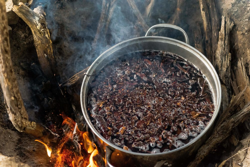 Pictured: Mulched and or hand stripped bark boiling on the fire for the first round of brewing.