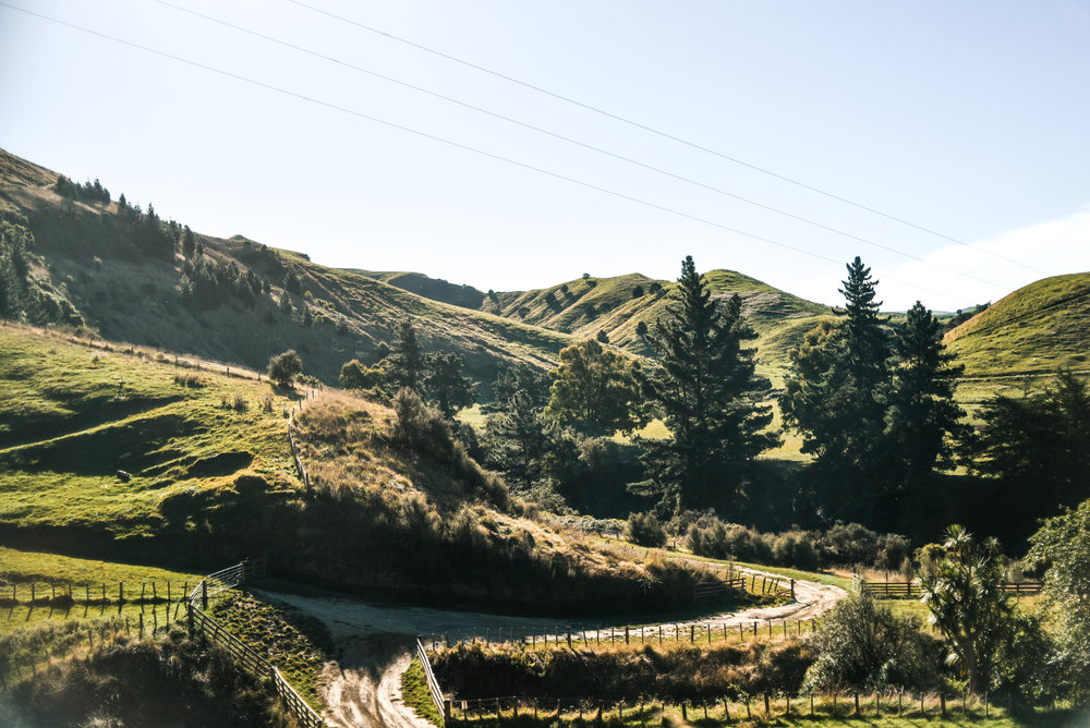 rivervalley-newzealand-northisland-travelguide-gretacaptures-kiwiexperience