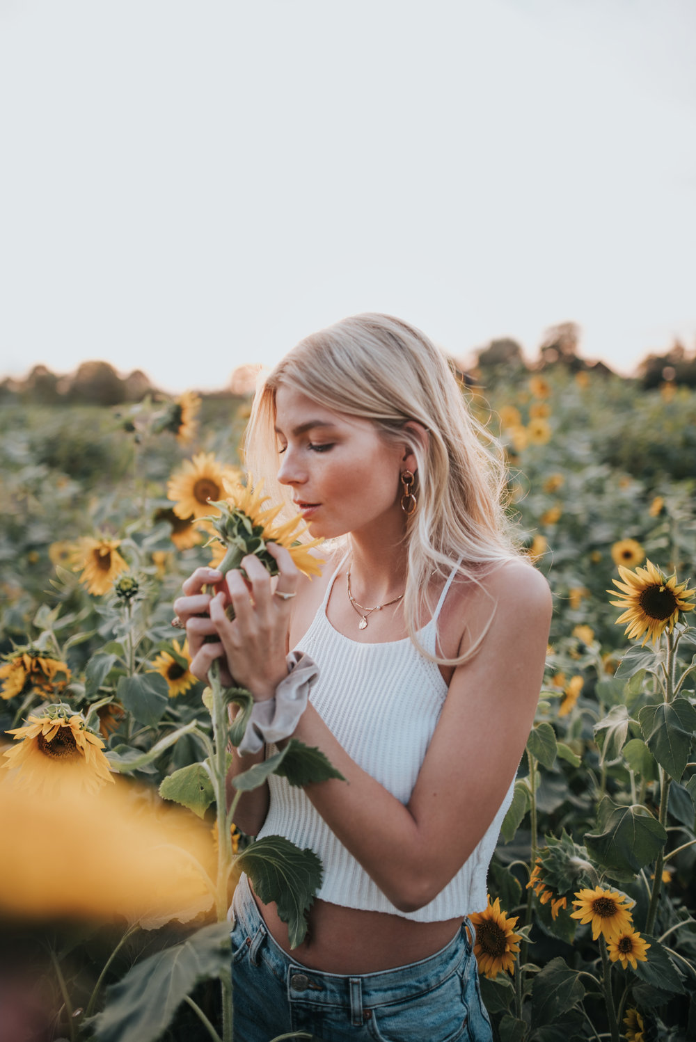 gretacaptures | photography | münster | sunflowers | golden hour shooting | summer