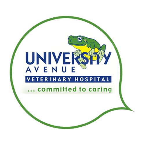 University Avenue Vet