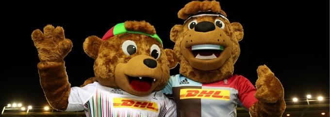 harlequins rugby twickenham.jpg