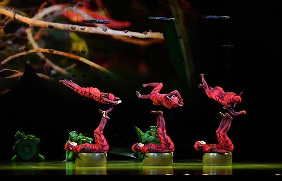 Cirque du Soleil - OVO Tickets at the Royal Albert Hall.jpg