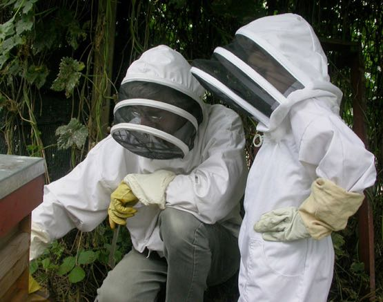Young beekeepers.jpg
