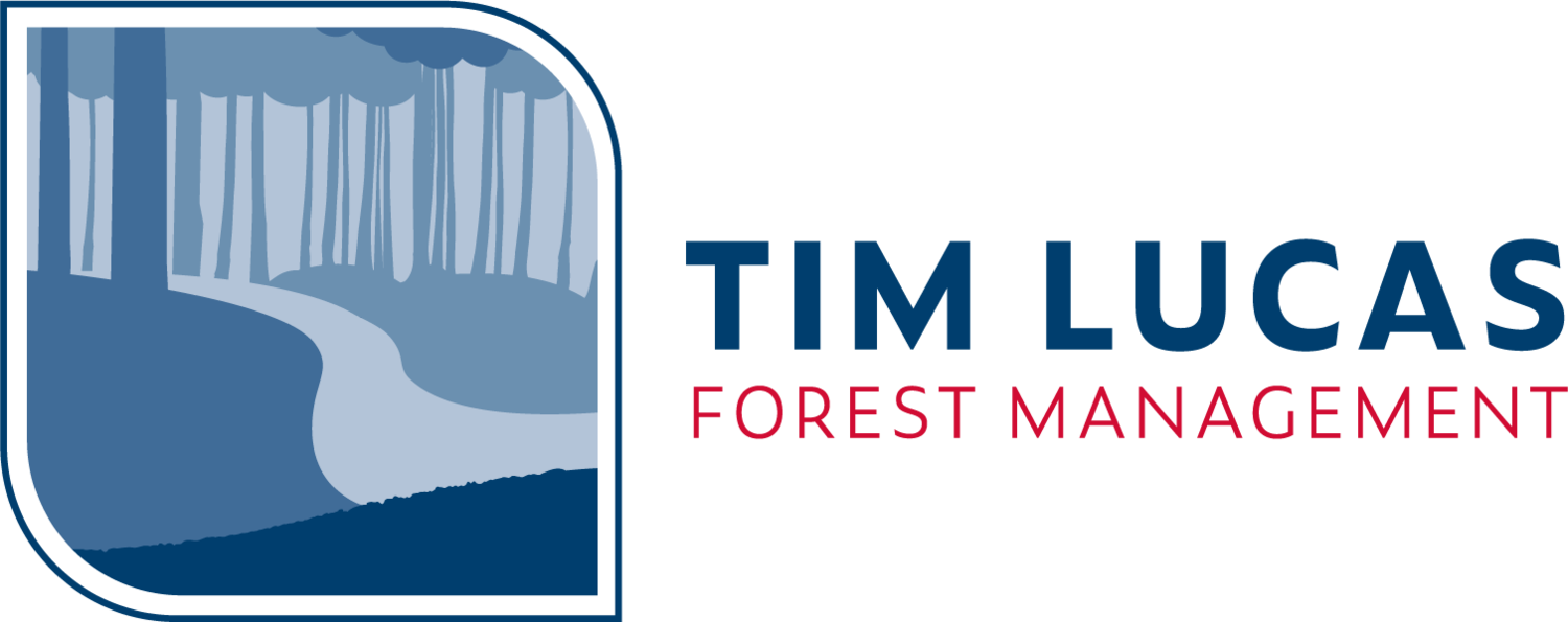 Tim Lucas Forest Management