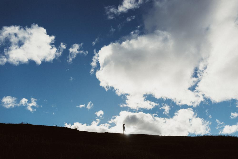 Iceland_Walk-286.jpg
