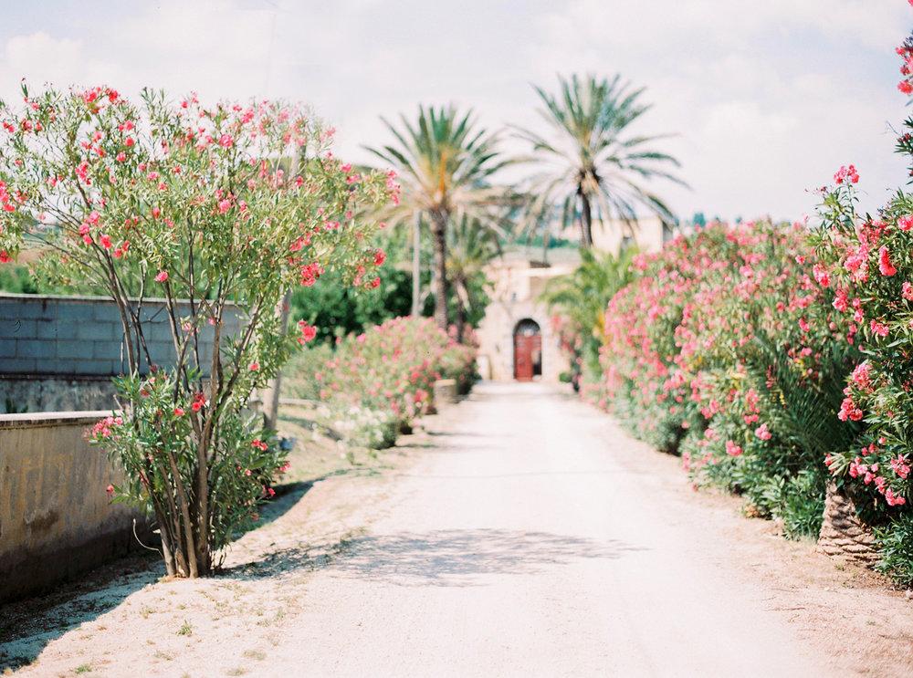 SicilyWedding+Carmencita-145.jpg