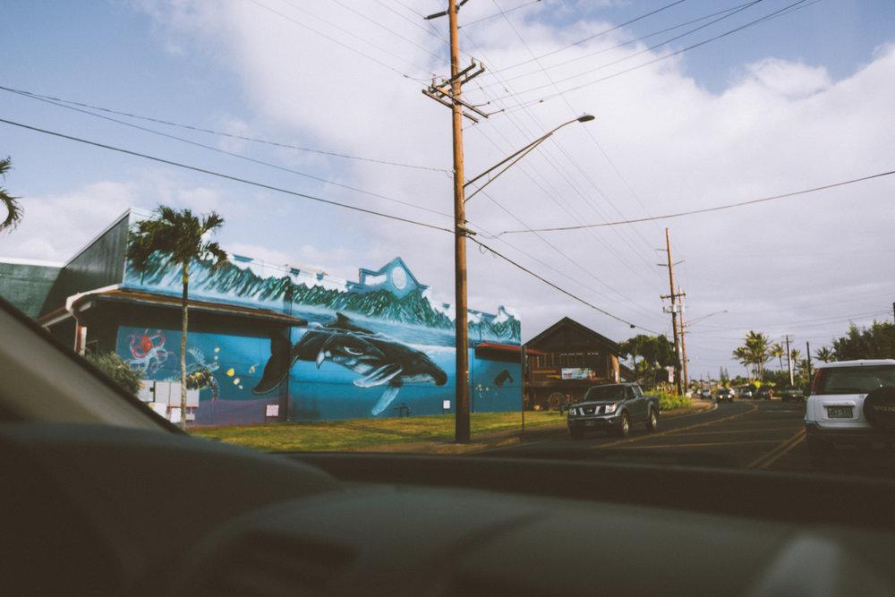 KauaiIsland-3.jpg