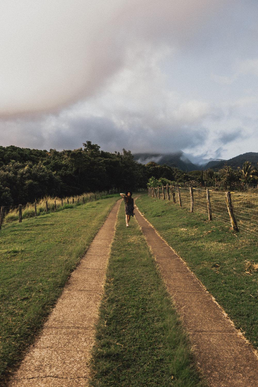 Maui_WV-26.jpg