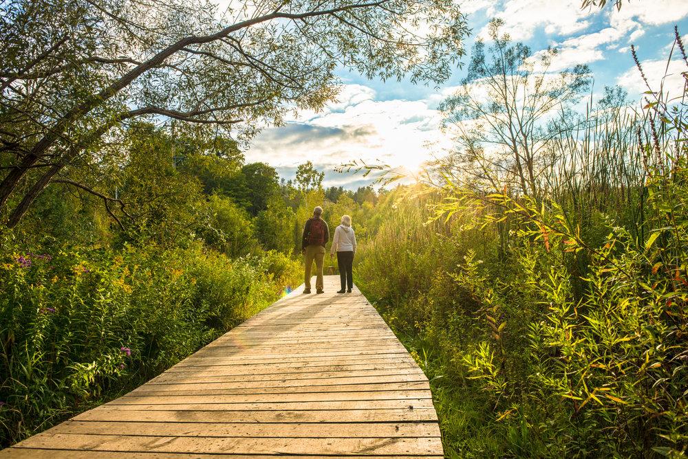 Parc urbain national de la Rouge, Ontario. photo : Scott Munn © Parcs Canada
