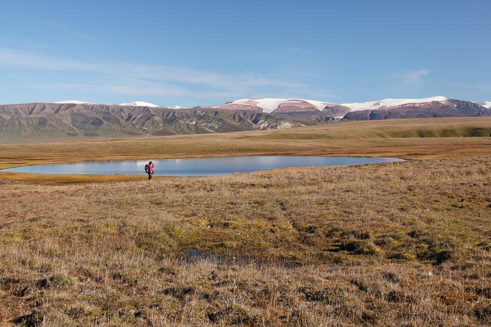 Refuge d'oiseaux migrateurs de l'île Bylot. photo : Christian Marcotte © Environnement et Changement climatique Canada