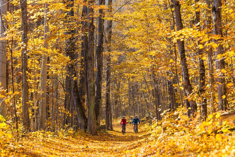 Parc national des Îles-de-la-Baie-Georgienne, Ontario, Photo : Ethan Meleg © Parcs Canada