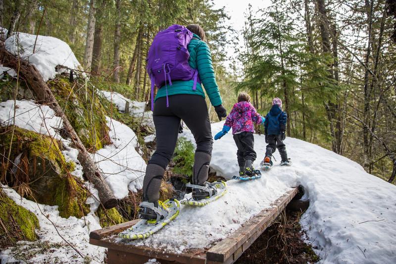 Parc national du Mont-Revelstoke, Colombie-Britannique, Photo : Ryan Bray © Parcs Canada