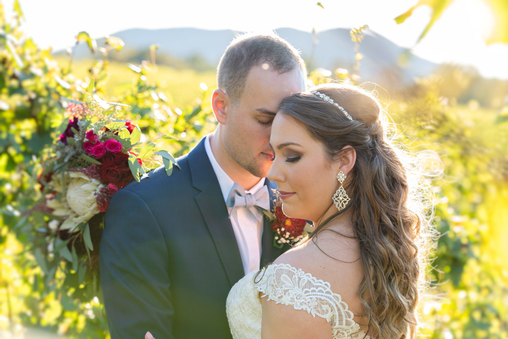 Just married photos at Round Peak Vineyards.