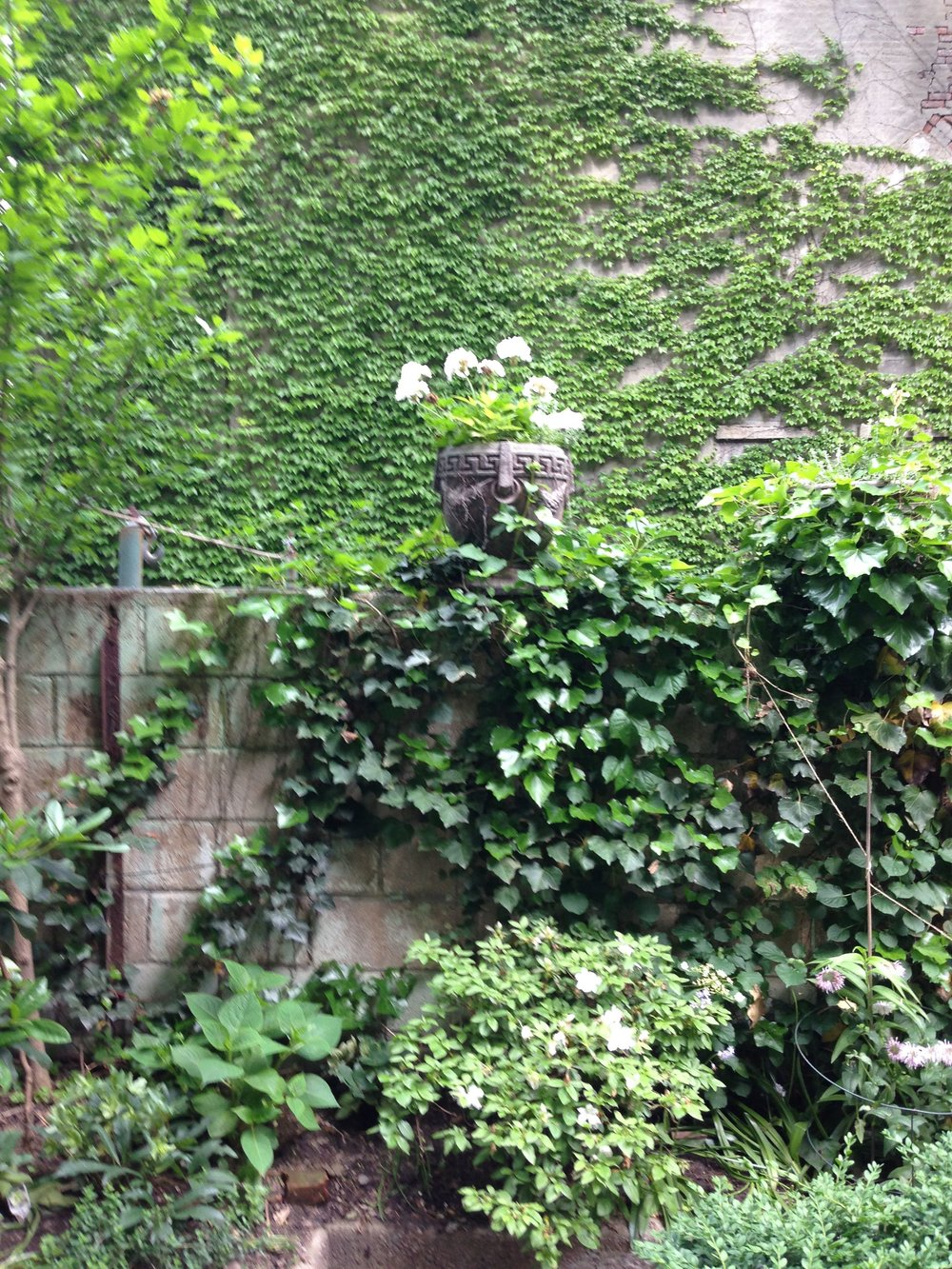 Wall NYC town house garden