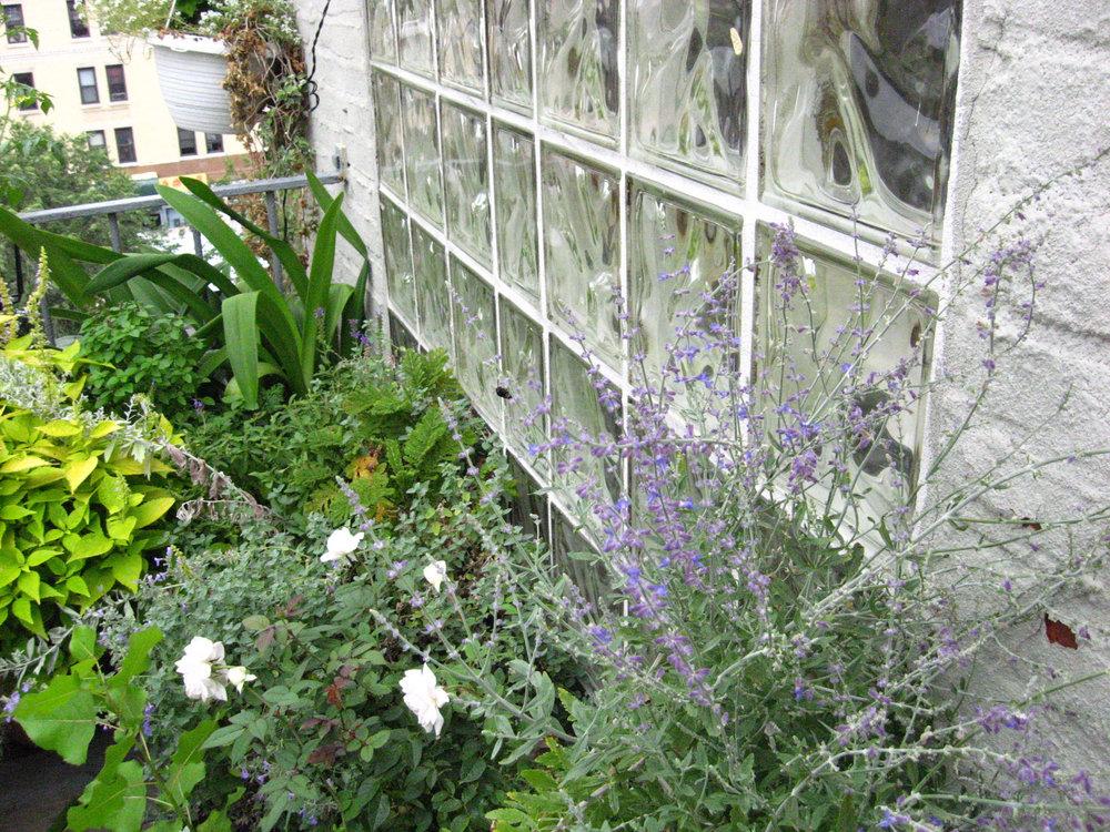 Sky Garden Bowery NYC