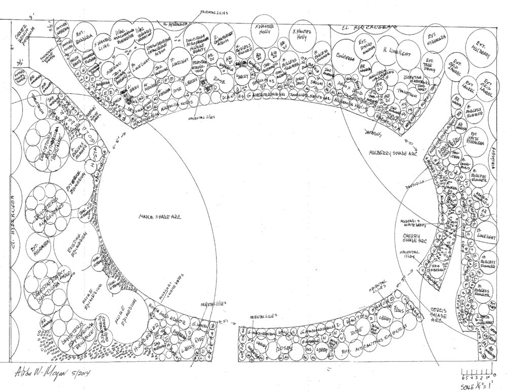 Chevy Chase Planting Plan