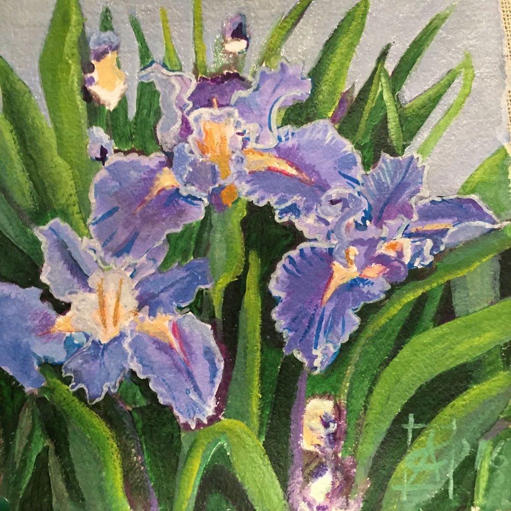 "Iris hexagonia 2016 acrylic on paper 10x10"" $500"