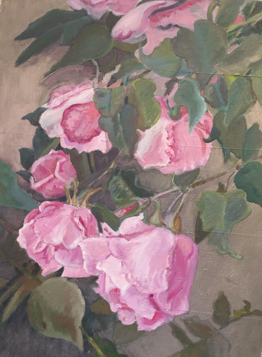 """Antique Rosa floribunda """"Barcciano""""  1998"""