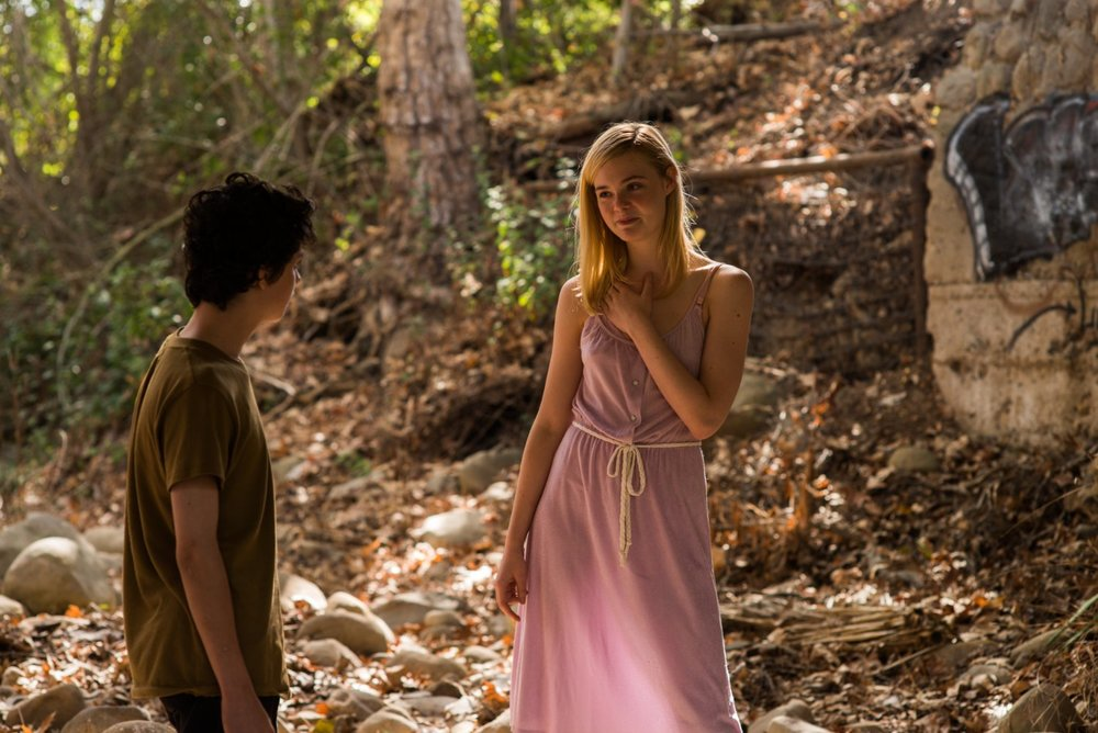 Lucas Jade Zumann and Elle Fanning in  20th Century Women  © 2016 A24