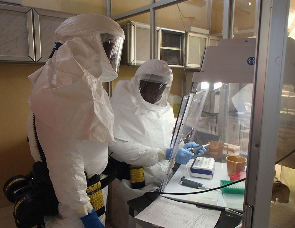 Photo courtesy of Wikimedia Commons From 2014–2016 the Ebola virus caused a devastating pandemic that killed many people throughout West Africa.