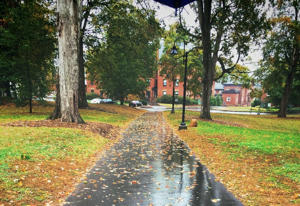 Photo courtesy of Linh Nguyen '21  The path from the library toward Porter Hall was often vacant over break.