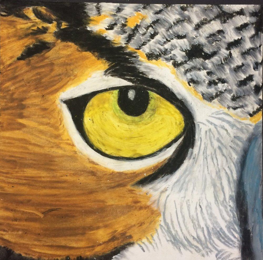 owl-eye-1-1024x1012.jpg