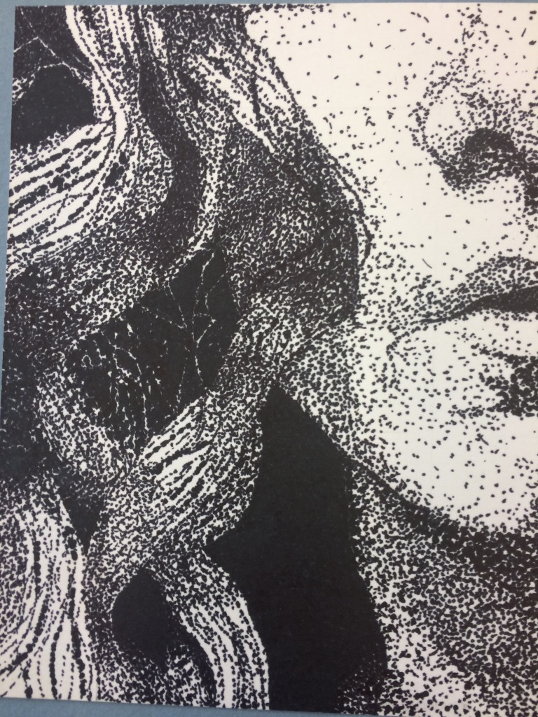 stippled-portrait-768x1024.jpg