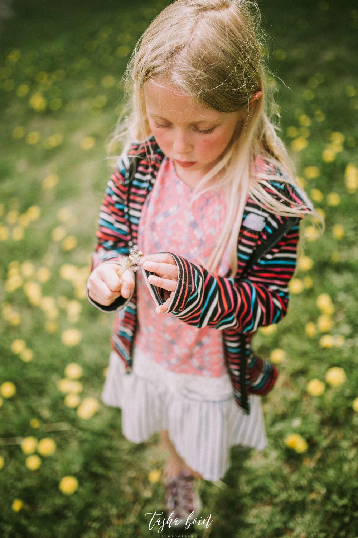 Day 12: Dandelions at Kincaid Park