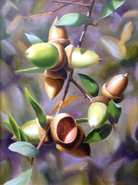 Acorns - Volcan Mountain 12x16 - oil on panel
