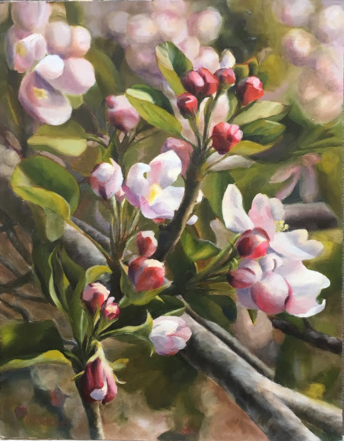 Spring in Julian   11x14 -   oil on panel