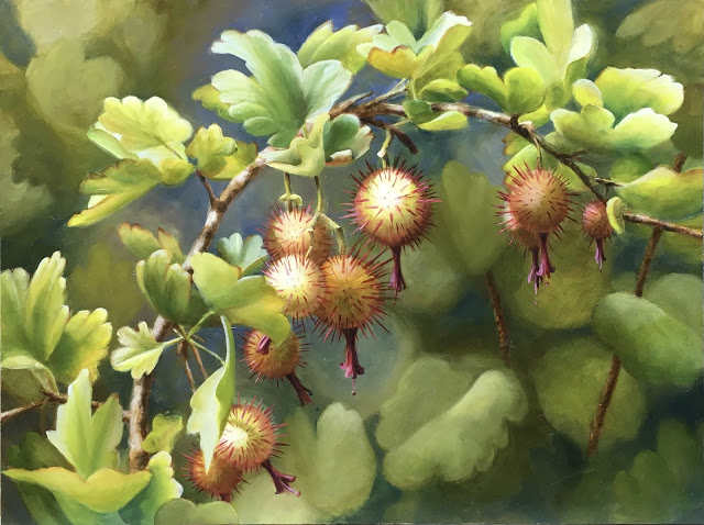 Gooseberries -   Volcan Mountain   12x16 - oil on panel