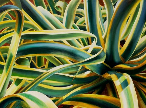 Agave Americana  - 20x24 - Oil on panel - SOLD