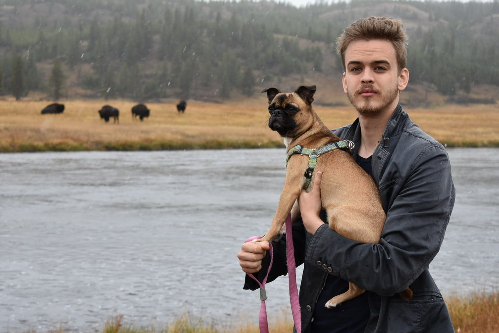 John and Frida with BISON in Yellowstone!