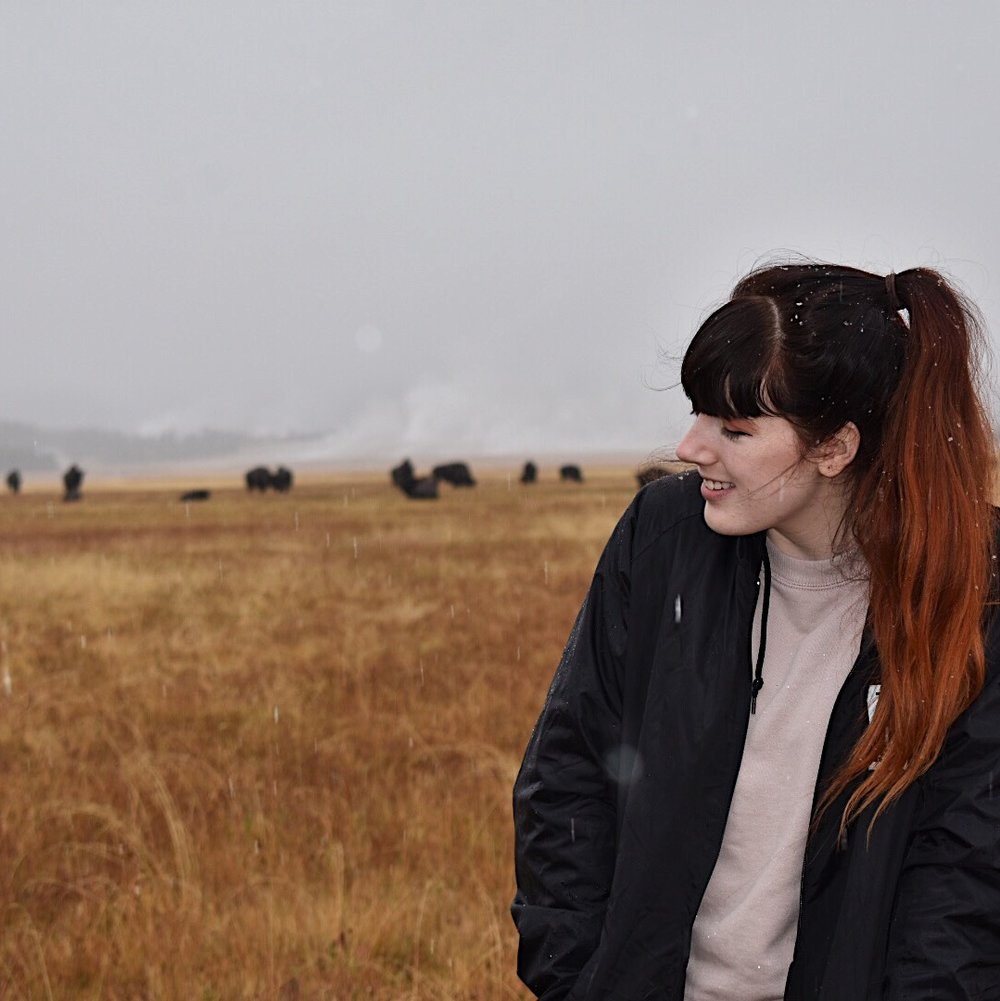 Me with bison as it starts to snow at Yellowstone.