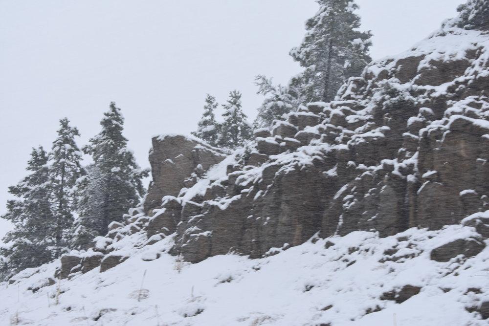 Snowstorm in Montana!
