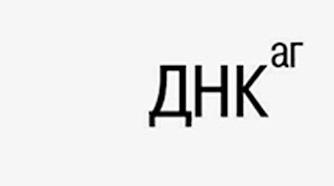 http://www.dnk-ag.ru