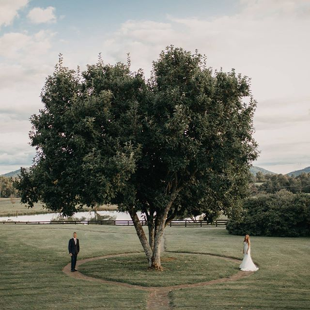 We had a great summer and looking forward to fall weddings 😆 #honestlovephoto #meadowbrook #brideandgroom #weddings #weddingphotography #weddingday #mountainside #theknot #stylemepretty #dc #dcphotographer #nova #novaweddings #shenandoahvalley