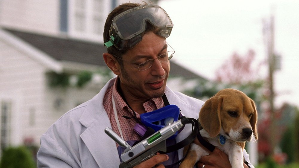 jeff goldblum, cats & dogs, cats & dogs movie, tobey maguire,
