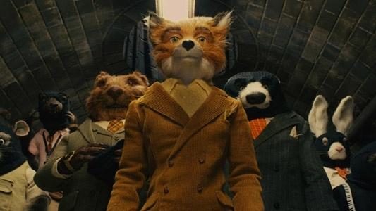 Clooney Fox